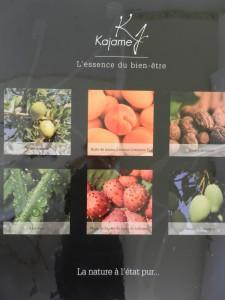 Tous les actifs contenus dans les produits Kajame : Huile d(argan, huile de noyau d'abricot, huile de pépins de figue de barbarie, beurre de karité, beurre de mangue et aloe vera