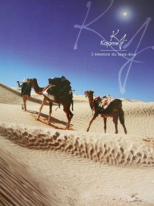 Deux dromadaires avec leur maître marche sur le sable du désert